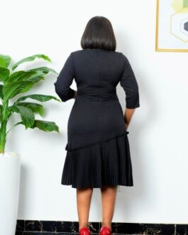 All round pleated dress
